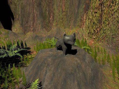Medieval Cat Simulator