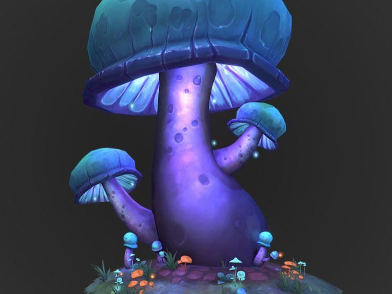 Melongena Cap Mushroom