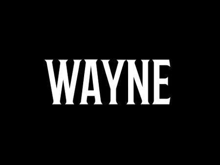 Wayne - A Batman Fan Animation