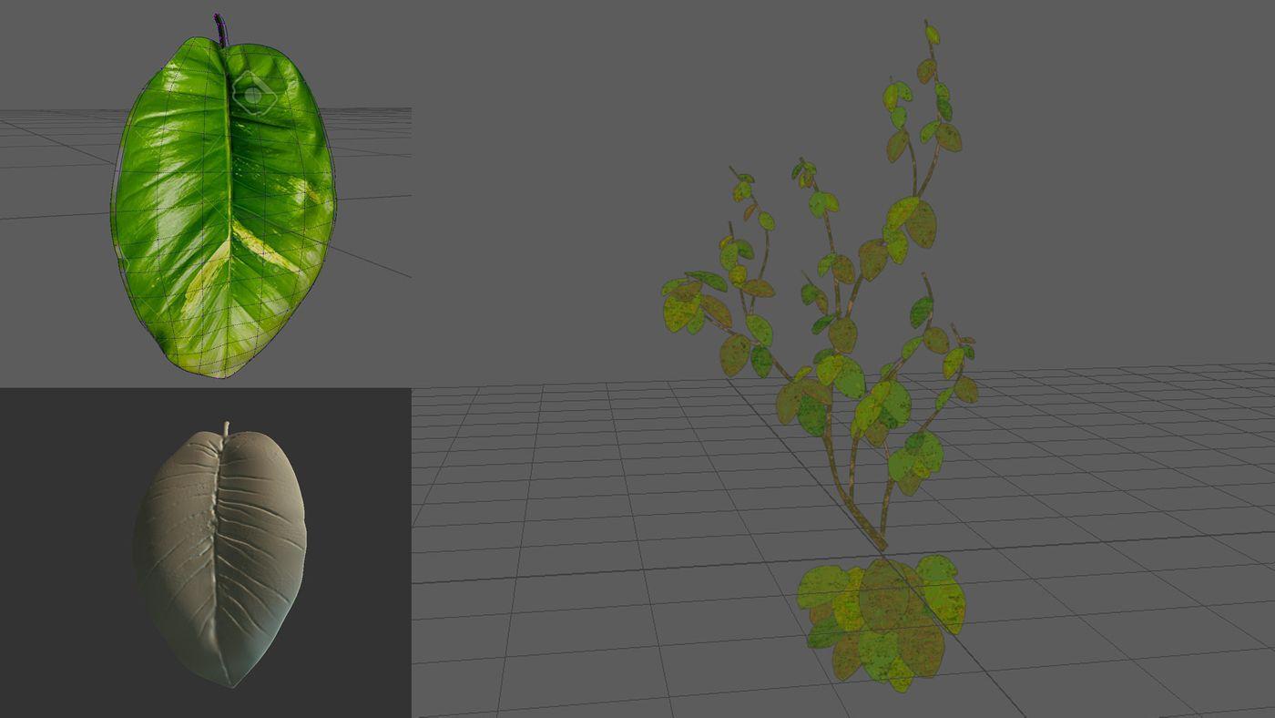 Iea David Hartmann Week07 Vine Model Sculpt Davidhartmann