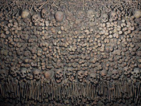 Paris Catacombs - Substance Material