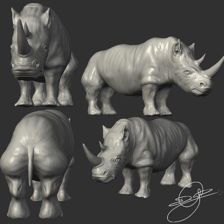 Study Rhinoceros - ZBrush