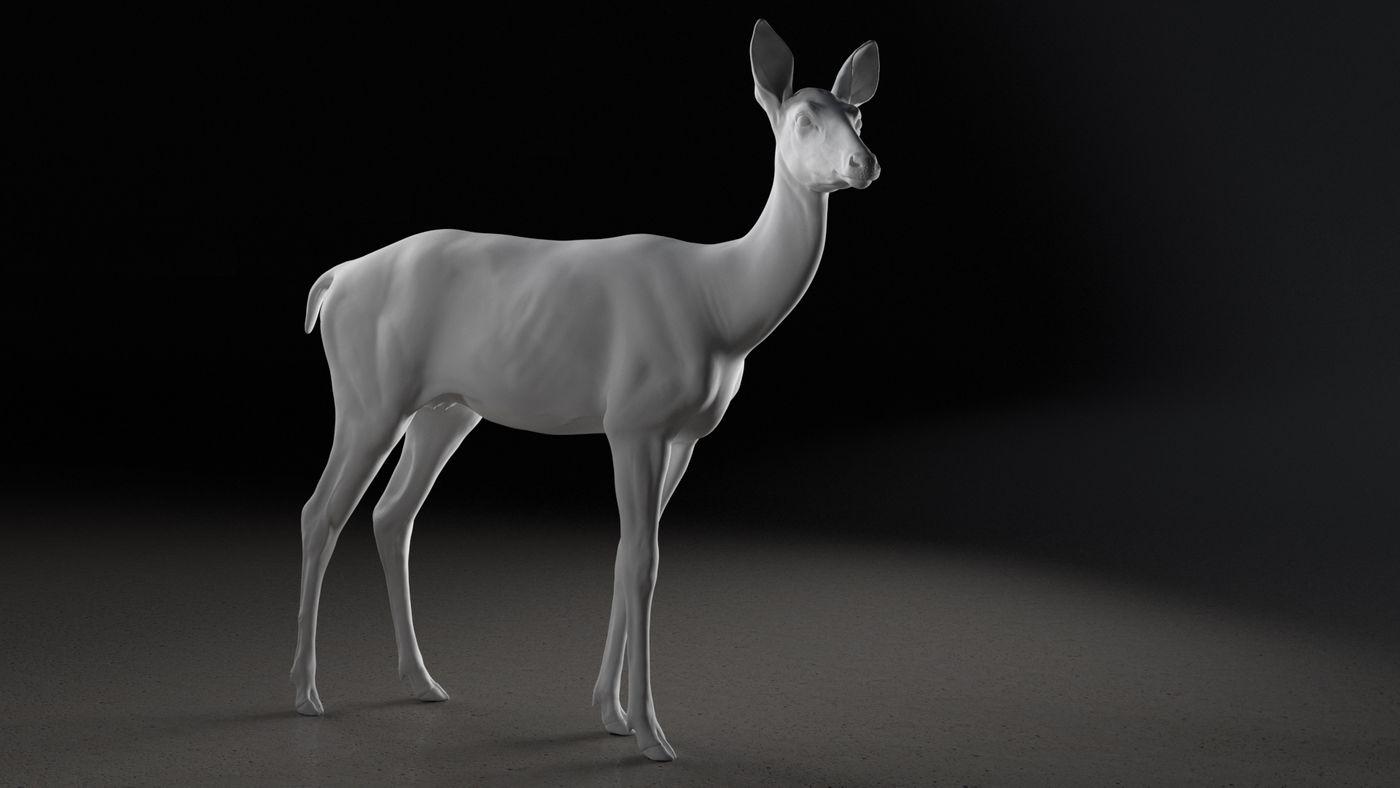 Deer Animation Grey  Elenadistefano.0130