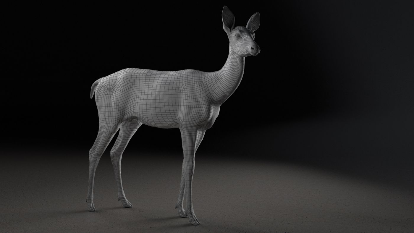 Deer Animation Wireframe  Elenadistefano.0130