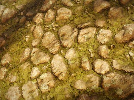 Mossy Rocks - Substance Designer