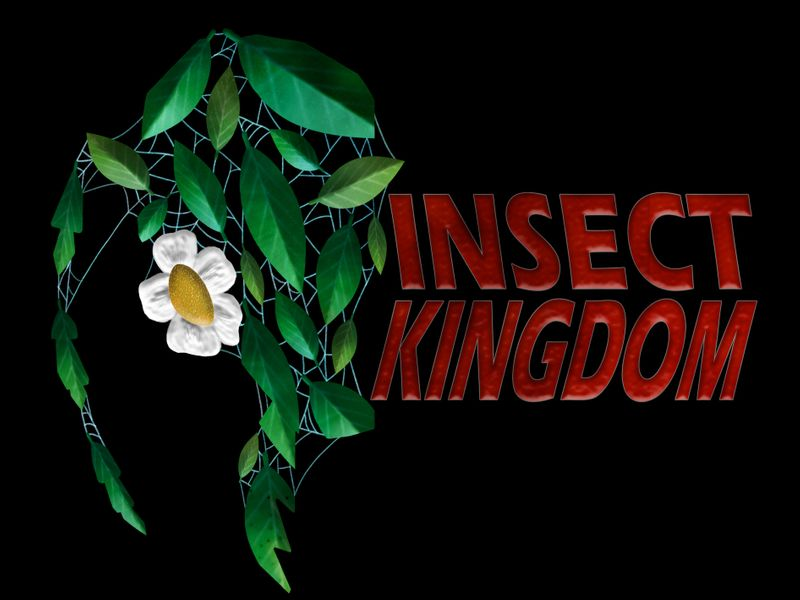 Insect Kingdom - Logo
