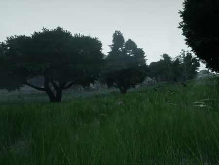 Realistic Foliage Environment