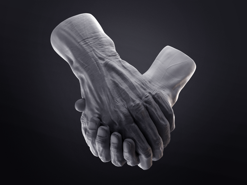 Anatomy study - hands