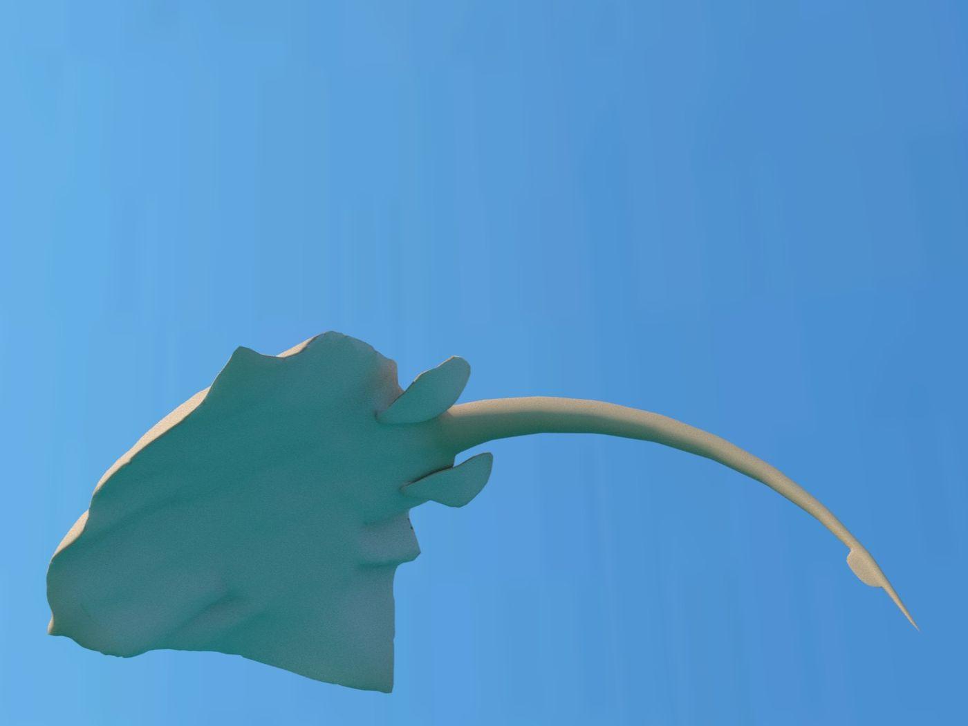 Stingray Jump Animation