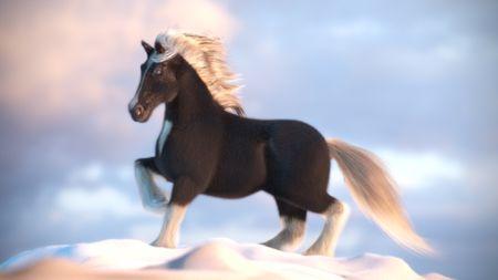 """Crack""  :Shire Horse"
