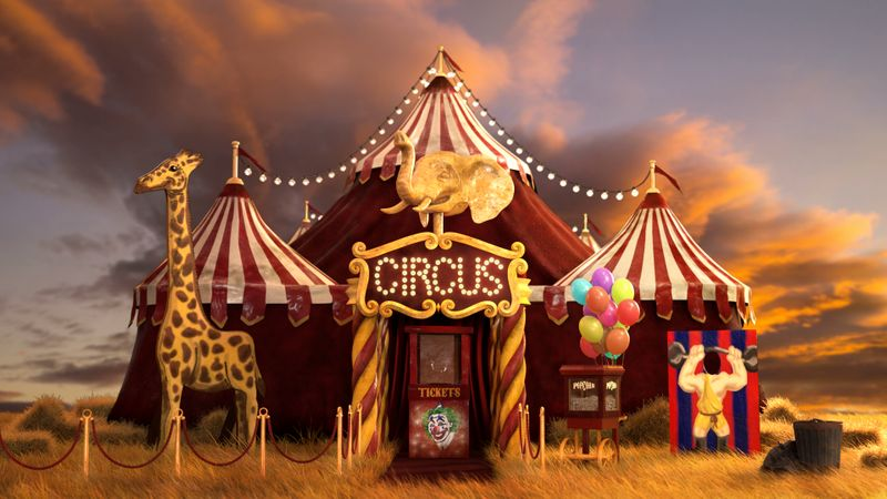 The Modest Circus
