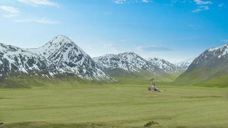 Hyrule Grasslands Stable