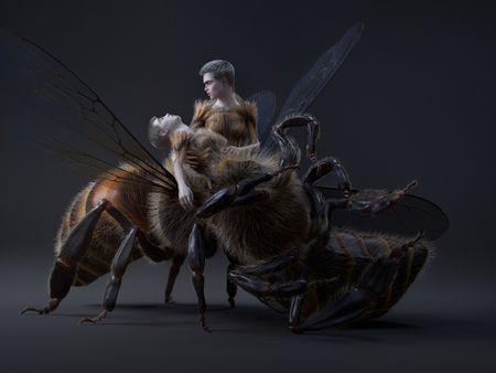 Dying Bee