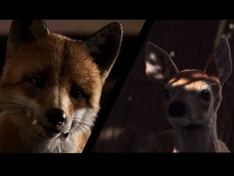 3D Animation Reel (VFX)