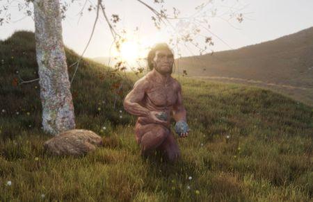 Homo erectus reconstruction