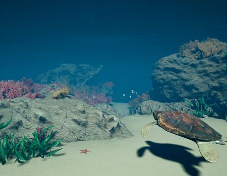 Virtual Reality Experience: Plastic and the Sea Turtle