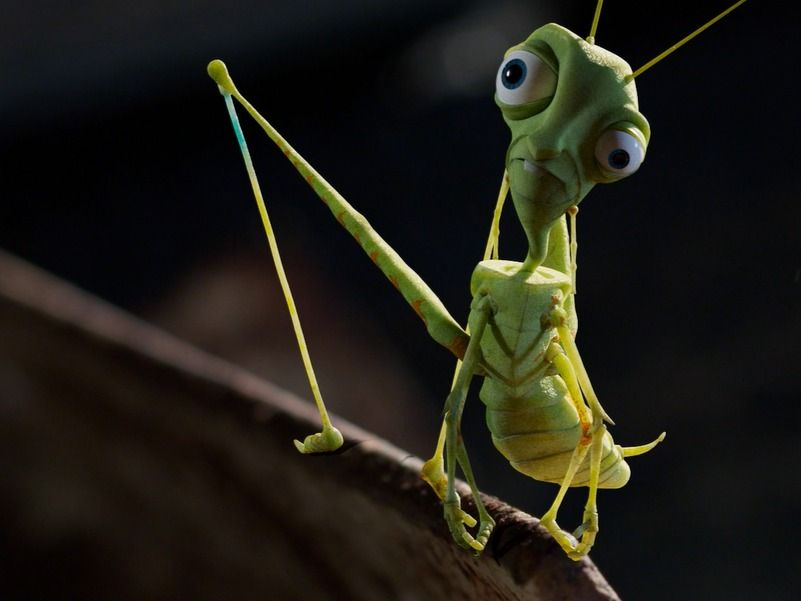 Crazy Cricket Character