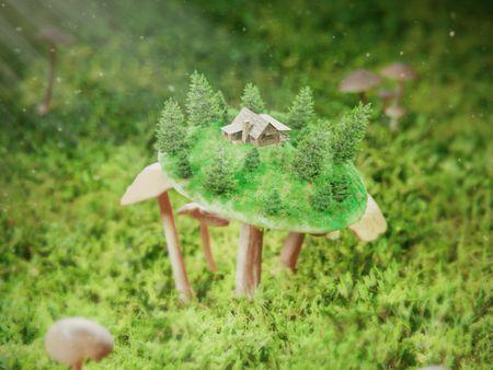 Mini House On A Mushroom