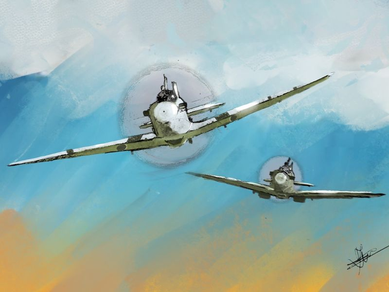 The Royal Air Force Spitfires