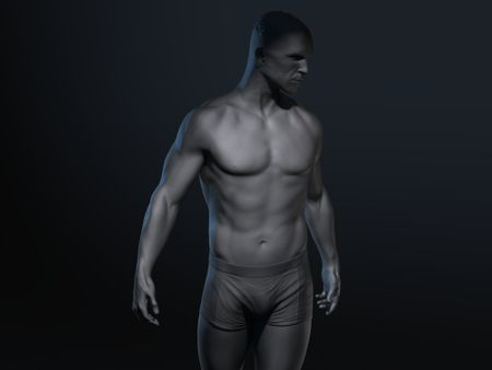Male Body - Animum Creativity Advanced School