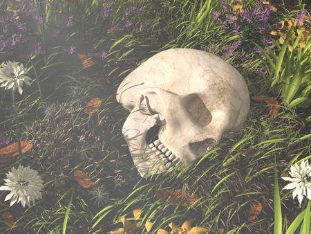 Oscar, The Skull