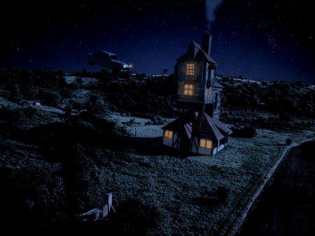 The burrow at night