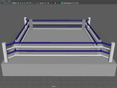 Professional Boxing Ring 3D Model
