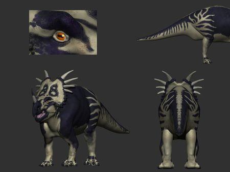Styracosaurus Anatomy study