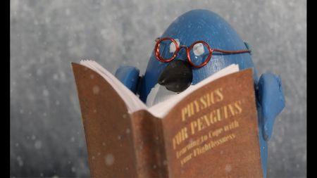 Physics for Penguins