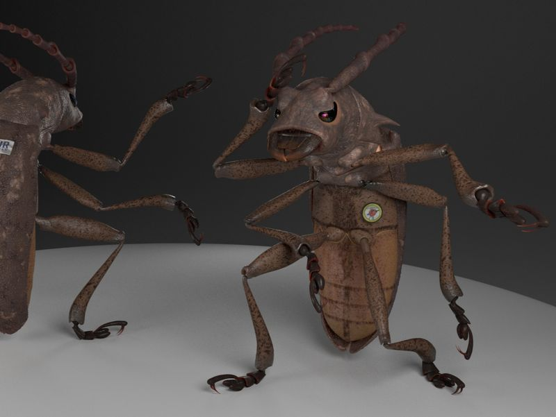 Project Insect - Bruno the Deminer