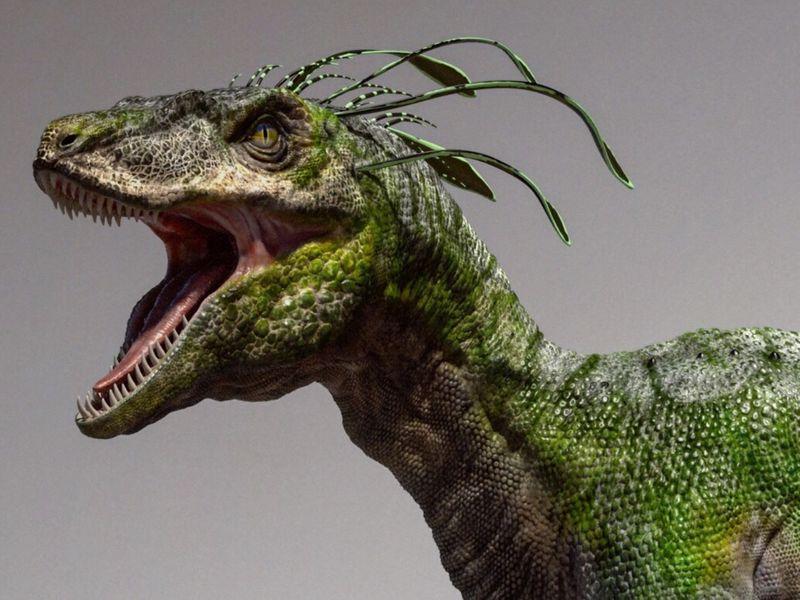 Green Raptor