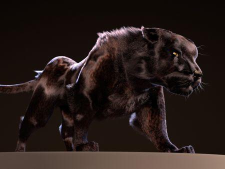 Fur - The panther
