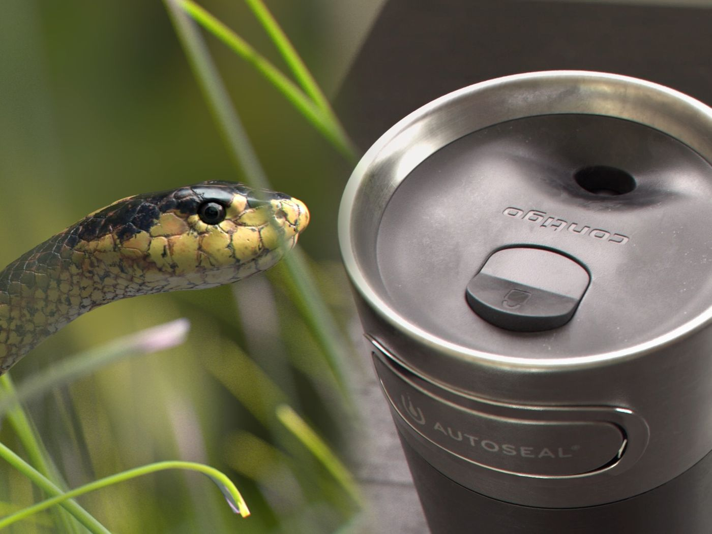 VFX entry: A snake and a bottle