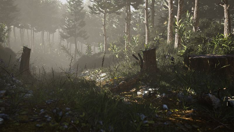 Forest in UE4