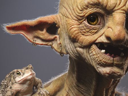Toad Goblin