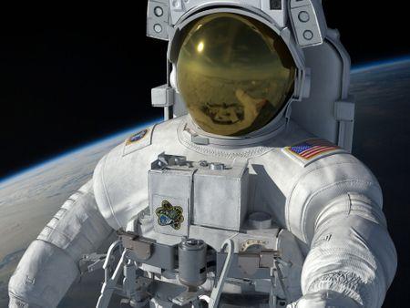 Spacewalk and Gorilla Park