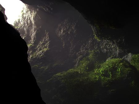 Mossy cave