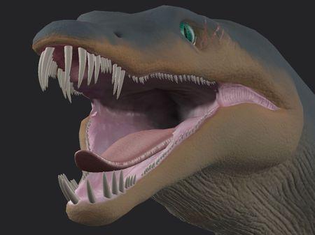 Dinosaur, Car and Shark models