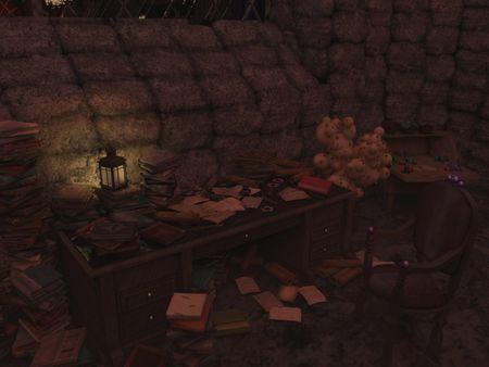 Harry Potter inspired room