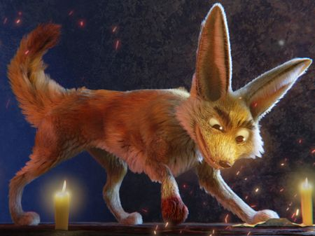 Lucius, the fennec