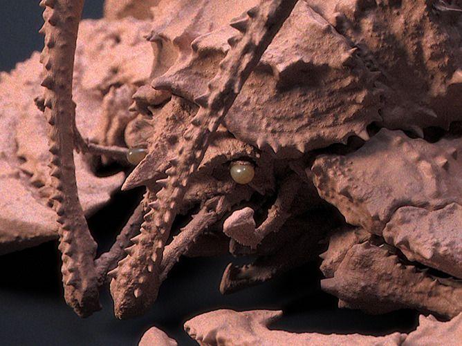Crustacean 01