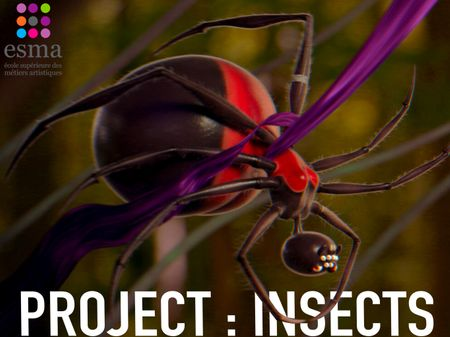 PROJECT : INSECT (Gin The Black Widow)