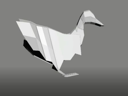 Duck Animations