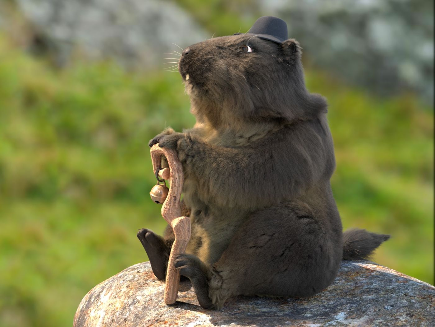 The marmot