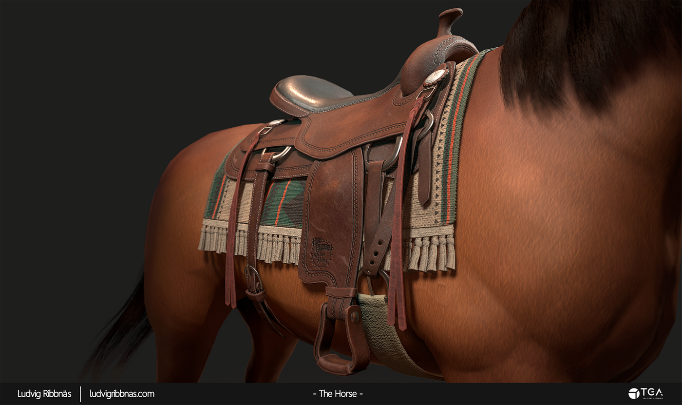The Horse Saddle Closeup Front Luribb