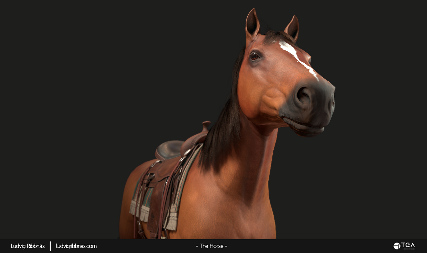 The Horse Head Closeup Luribb