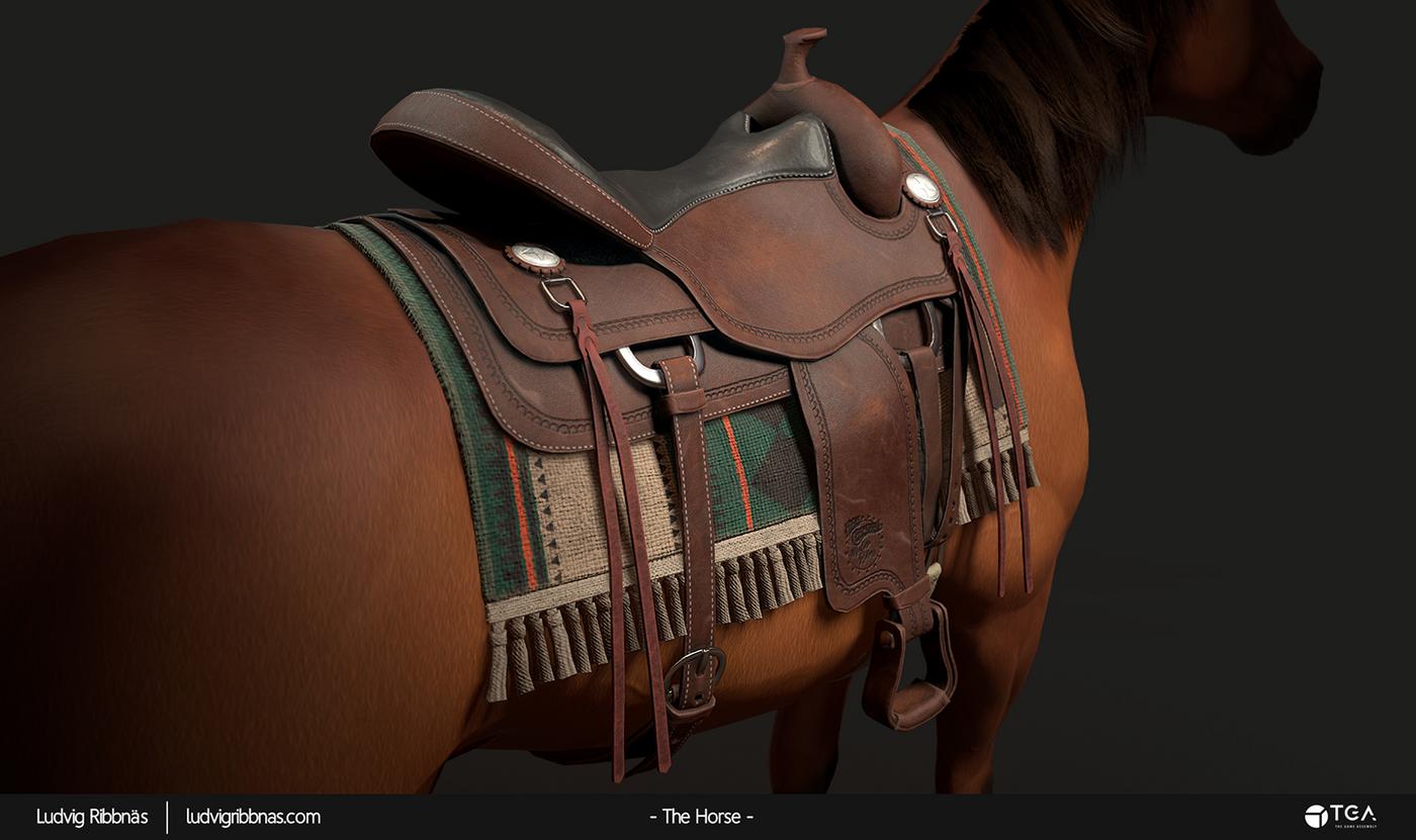 The Horse Saddle Closeup Back Luribb
