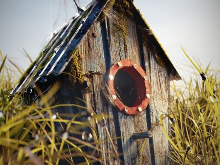 Forgotten birdhouse