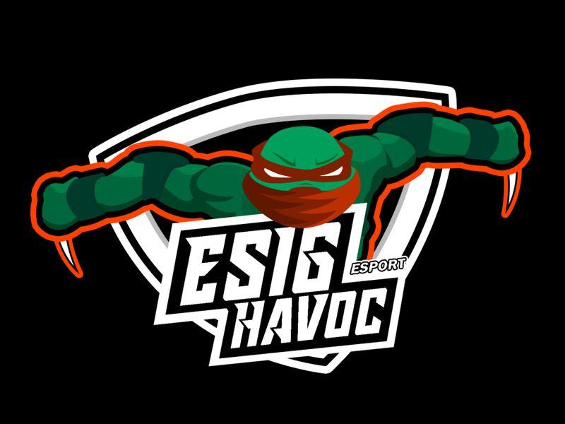 2D Logos