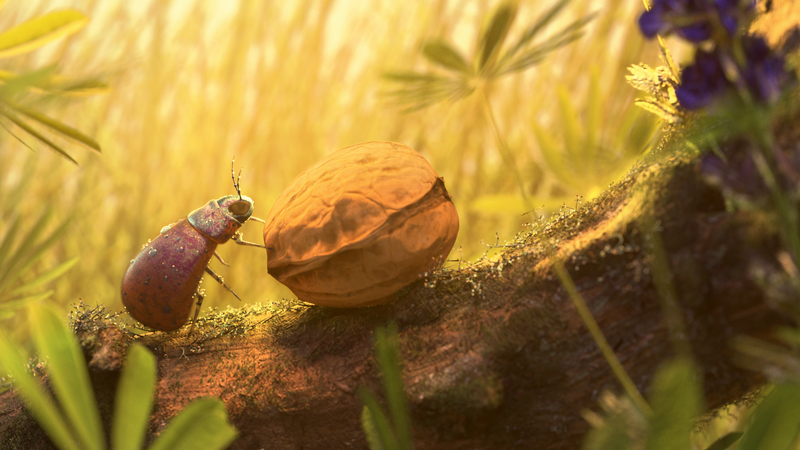 3D Insect - Environment